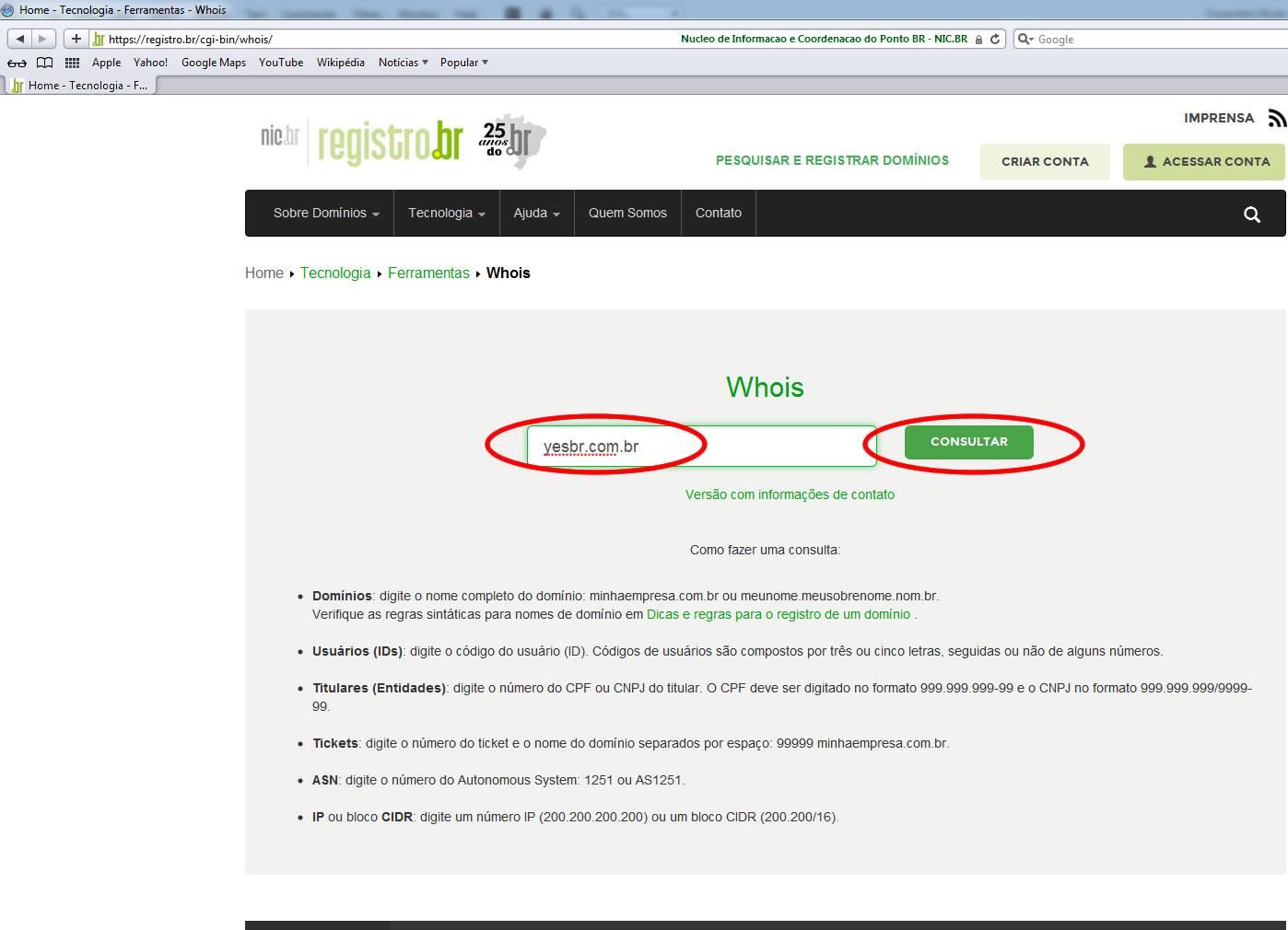 Campo para consulta de domínio no registro.br